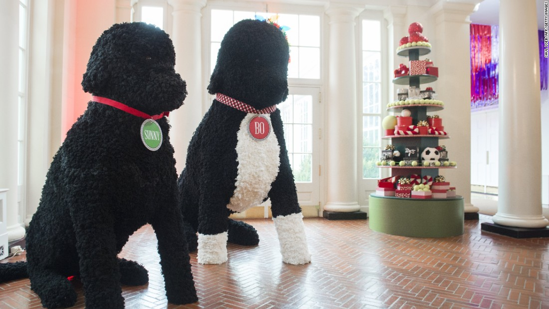 Replicas of the first family's dogs and other holiday decorations tower in the East Wing on November 29, 2016.