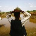 Sudan climate change 03