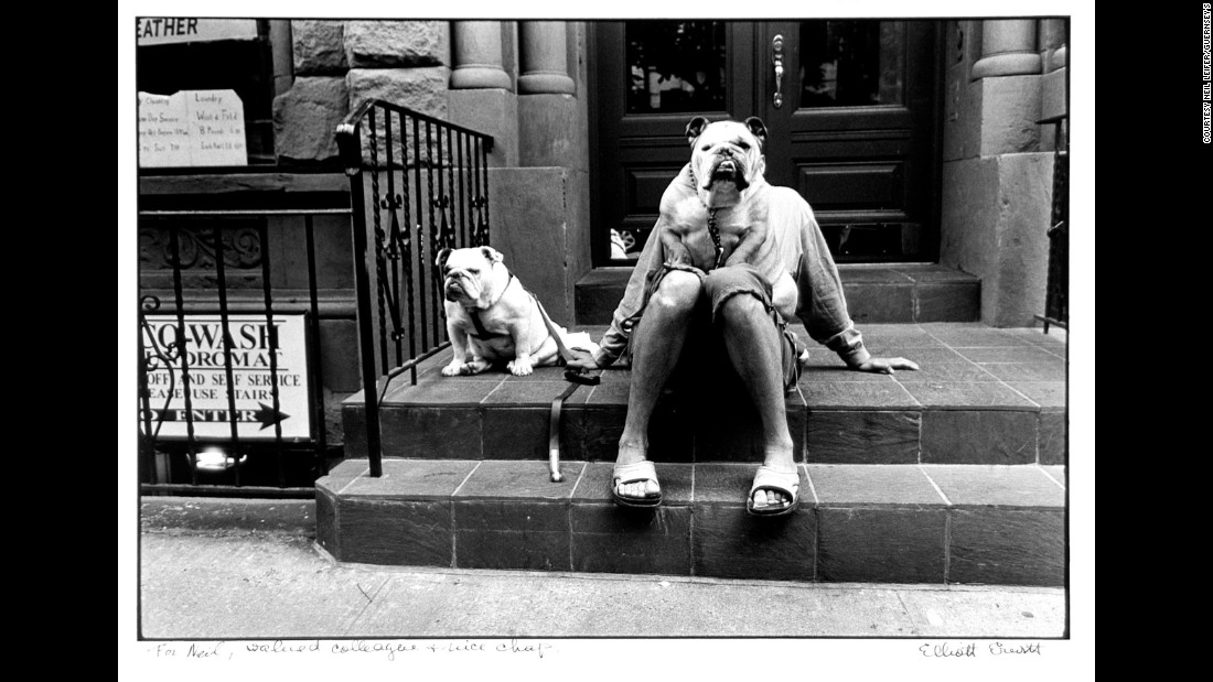 A man and his dogs, as photographed by Elliott Erwitt in 2000.