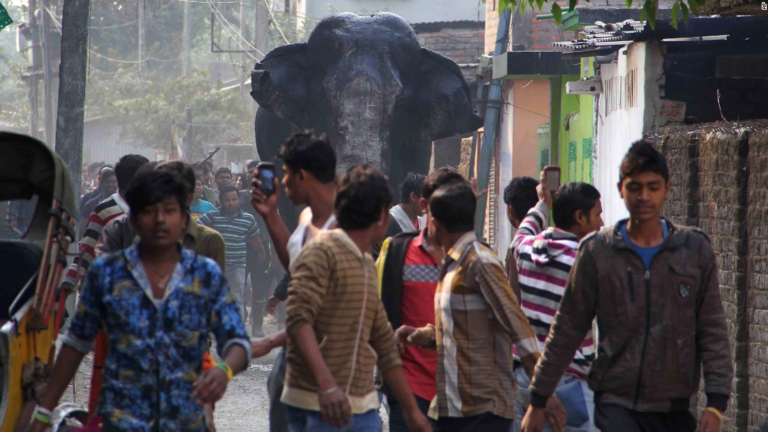 "<strong>February 10:</strong> A wild elephant <a href=""http://www.cnn.com/2016/02/10/world/gallery/wild-elephant-india/index.html"" target=""_blank"">wandered into the Indian town of Siliguri,</a> trampling parked cars and motorbikes before being tranquilized by wildlife officials."