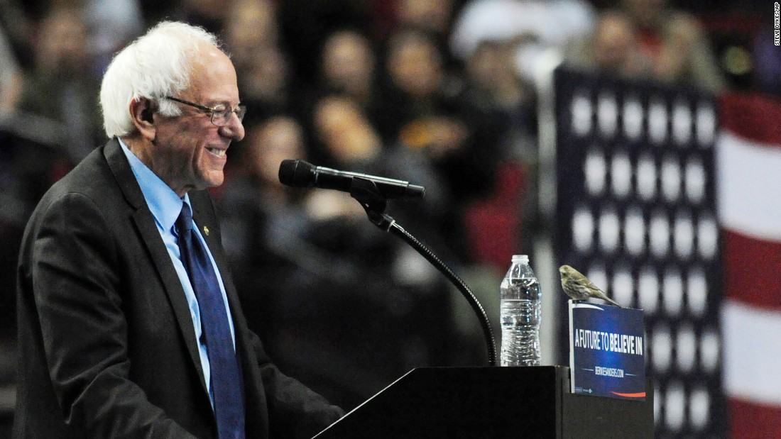 "<strong>March 25:</strong> US Sen. Bernie Sanders, who was seeking the Democratic Party's presidential nomination, smiles at a bird after <a href=""http://www.cnn.com/2016/03/25/politics/bernie-sanders-bird-portland-oregon-symbolism/index.html"" target=""_blank"">it landed on his podium</a> in Portland, Oregon."