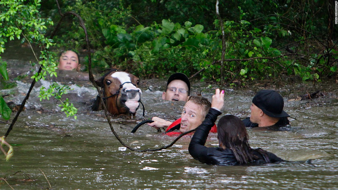 "<strong>April 18: </strong>People try to rescue horses along Cypress Creek after <a href=""http://www.cnn.com/2016/04/19/us/houston-texas-flooding/"" target=""_blank"">more than a foot of rain fell in parts of Houston,</a> submerging subdivisions and several interstate highways."