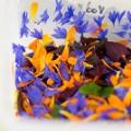 ski restos H+¦tel Flocons de Sel -® Anne-Emmanuelle Thion (51)