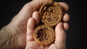 500-year-old secrets of boxwood miniatures unlocked