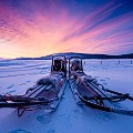 medium_dog-sledding-torne-river-icehotel-2017