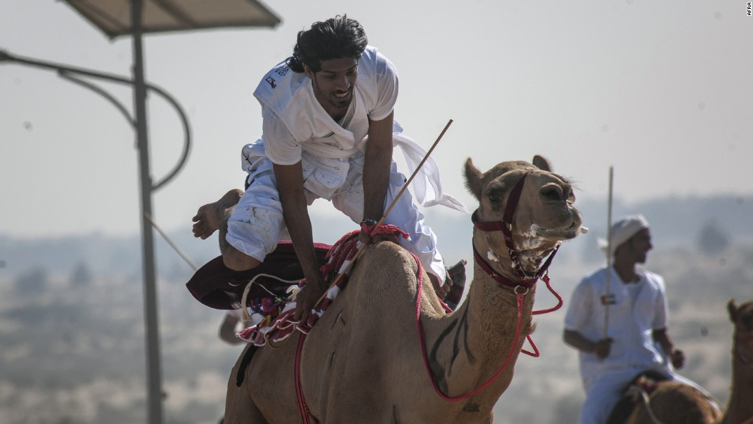 Every competitor has their own style of racing, such as sitting, standing or squatting on the camel.