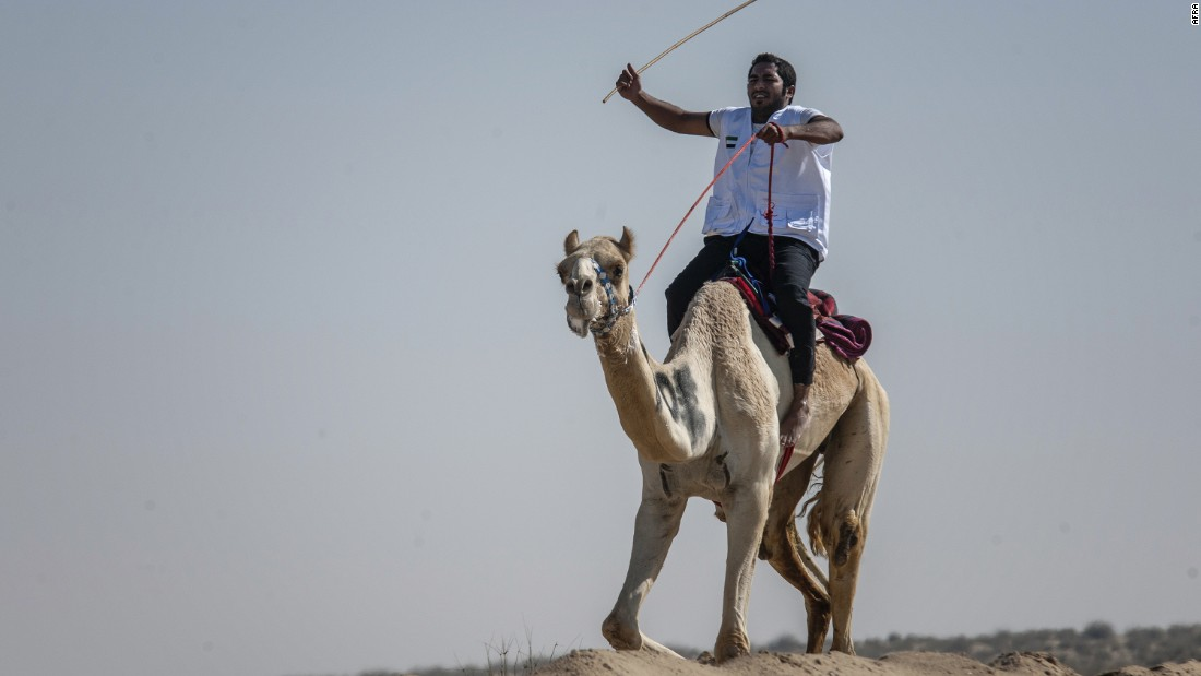 The practice of camel racing has changed over time. In modern times, it's more common to see robot jockeys, rather than human riders.