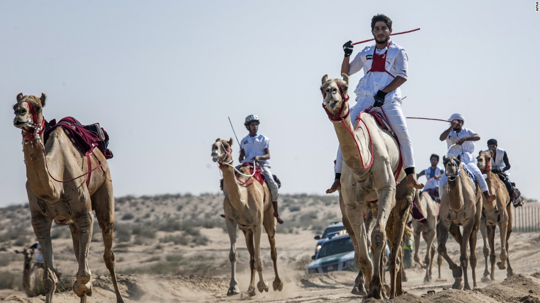 The winner of this year's National Day Camel Marathon took home a luxury car.