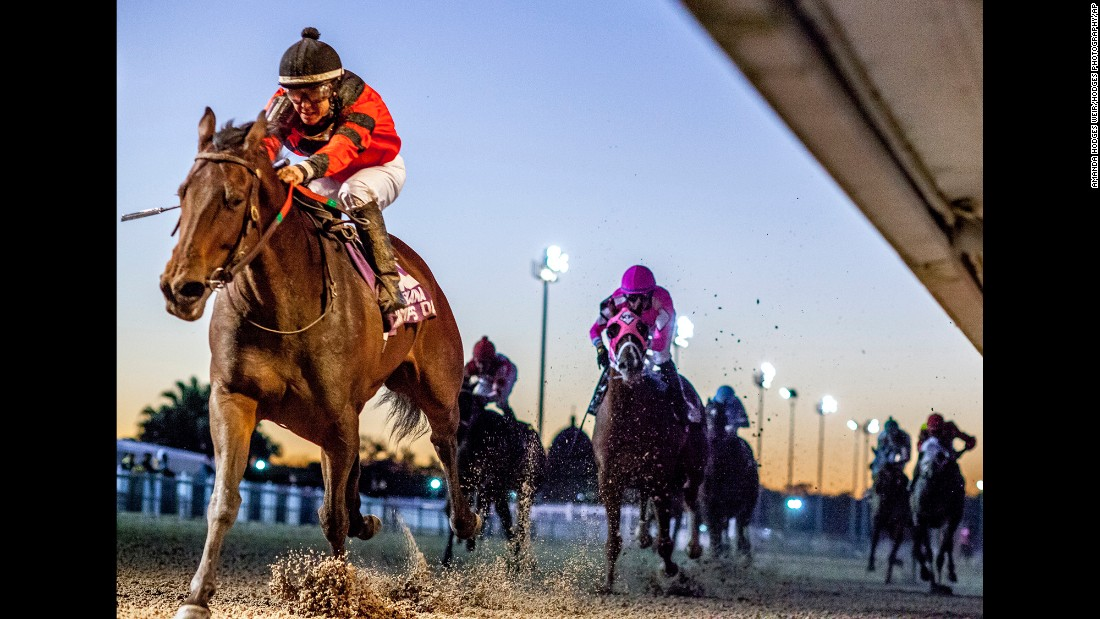 Horses race in New Orleans on Saturday, December 10.