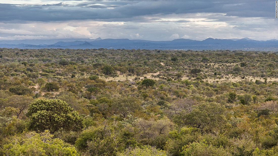 Kruger National Park spans 7,300 square miles and is home to elephants, white rhinos, lions, leopards, crocodiles and buffalo.