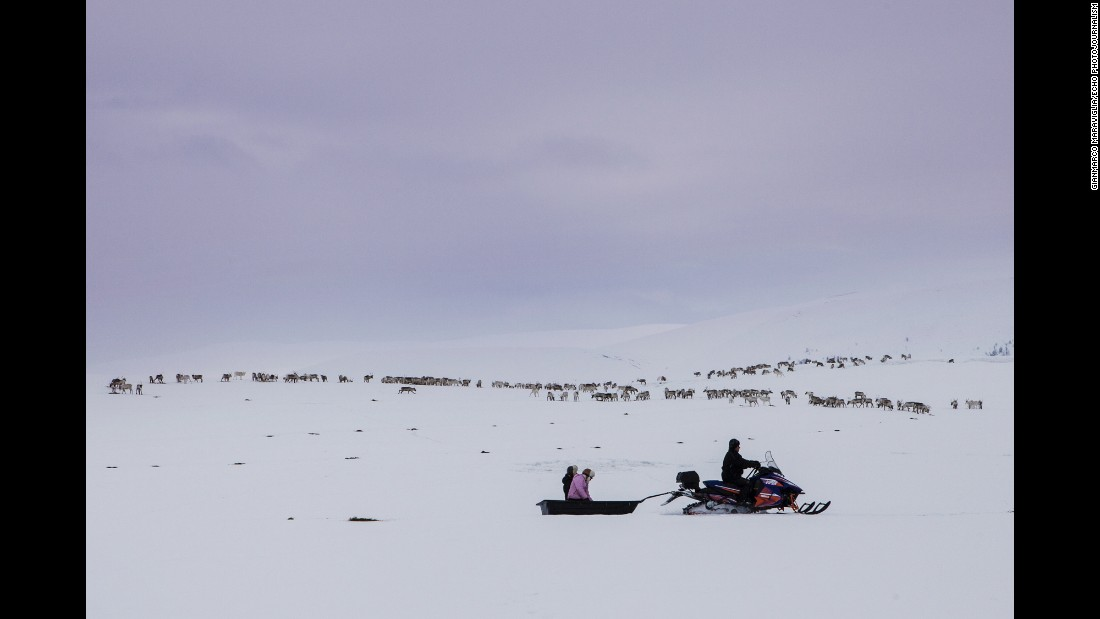 A Sami herder and his family bring food for the reindeer as they travel near Karasjok, Norway.