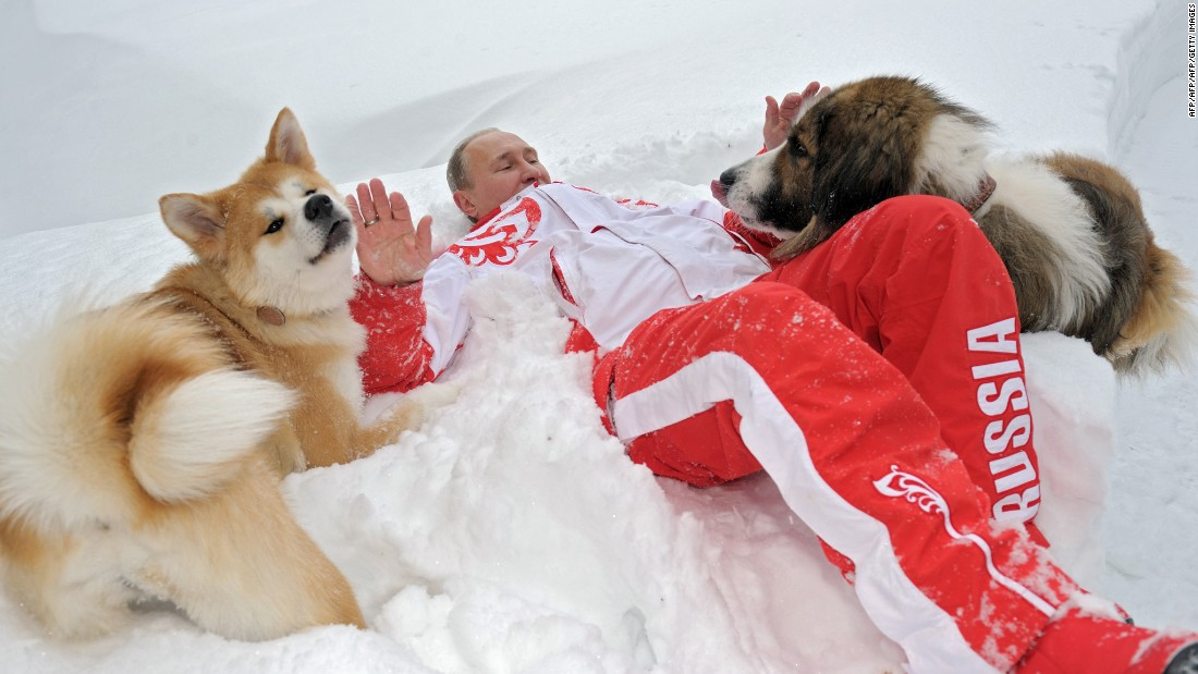 Putin plays with his dogs 'Buffy', right, and 'Yume' at his residence Novo-Ogariovo, outside Moscow, on March 24, 2013.