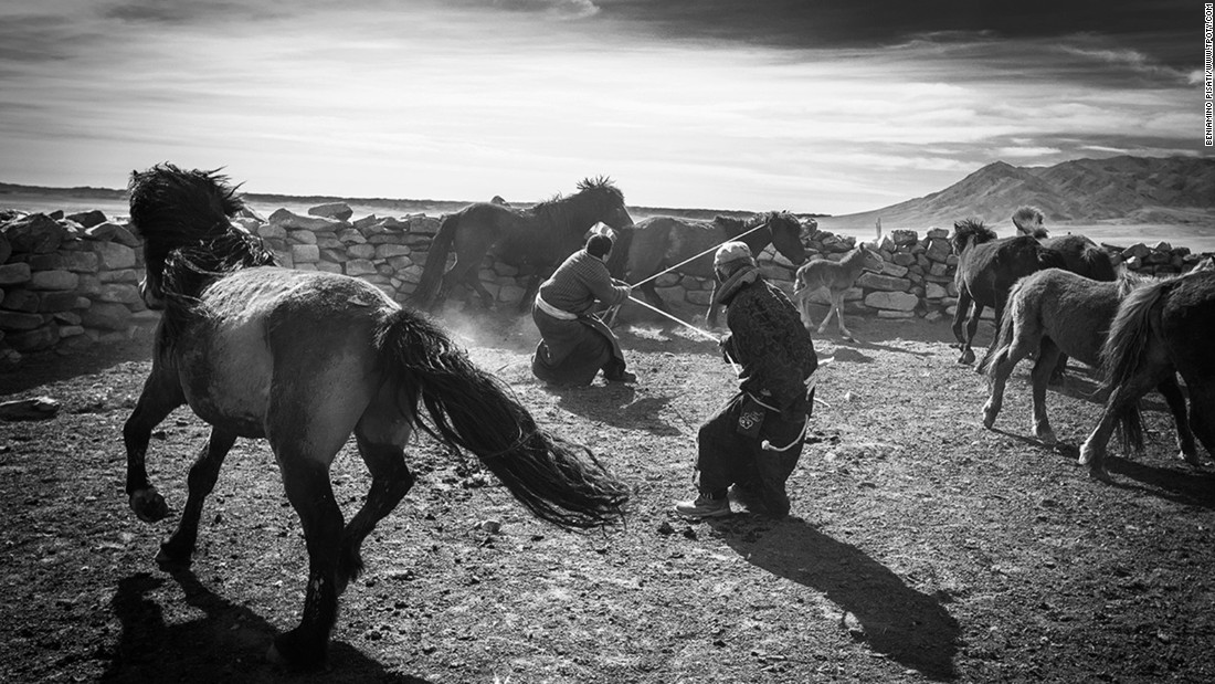 Italian photographer Beniamino Pisati was named winner in the Journeys and Adventures portfolio category for his images of Mongolian grassland owners and their relationships with wild horses.