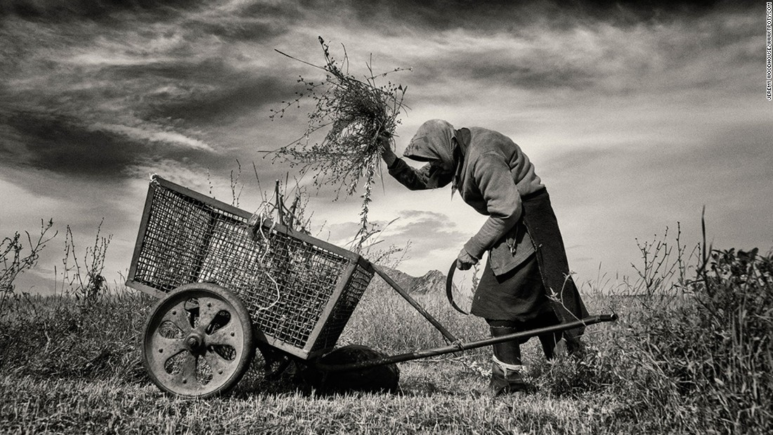 """This elderly woman was cutting grass from a small plot to feed her livestock,"" says UK photographer Jeremy Woodhouse, who shot this image in Coltesti, Romania. Woodhouse took the best single image award in the Mankind portfolio category."