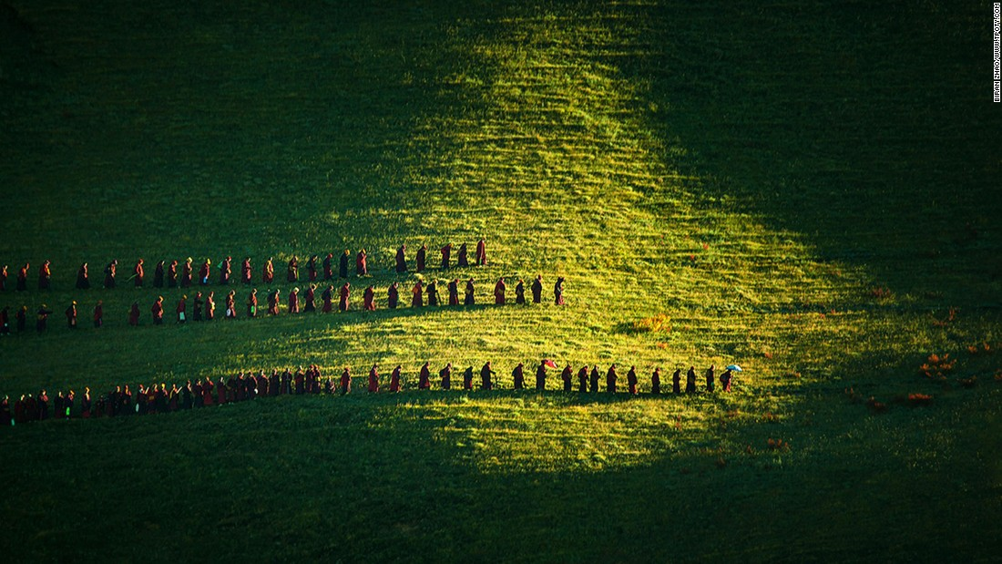 Sunlight catches a ritual of devotion in Chinese photographer Biran Zhao's image of nuns taking their daily walk in Sichuan Province, China.