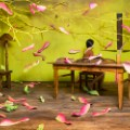 jee young lee new 4
