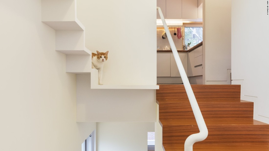 The cat and human stairwells stand side by side in this three-story house.
