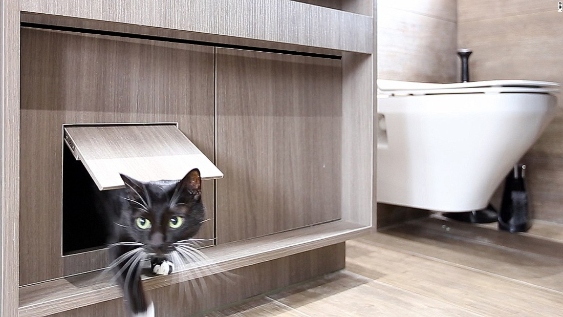 Tucked away under the bathroom sink, the cats' litter box is designed to diffuse smells so the apartment stays fresh.
