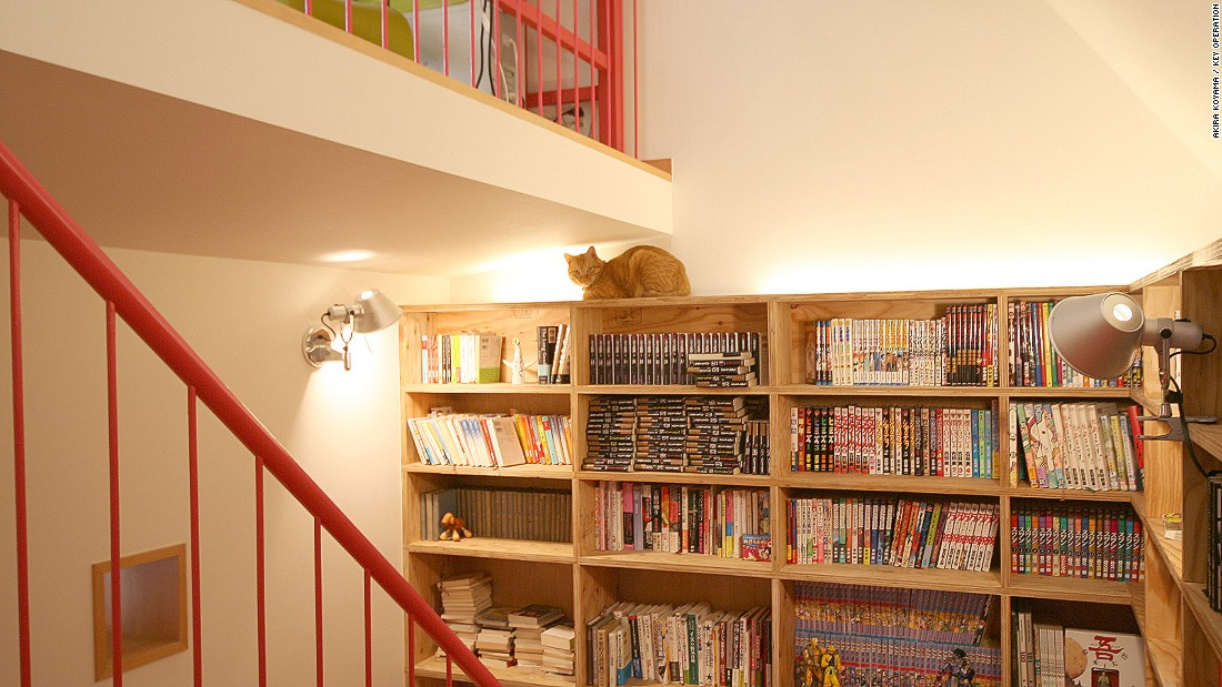 The apartment is designed to enable the cat to explore various levels with ease -- jumping from bookshelves to stairwells and ledges.