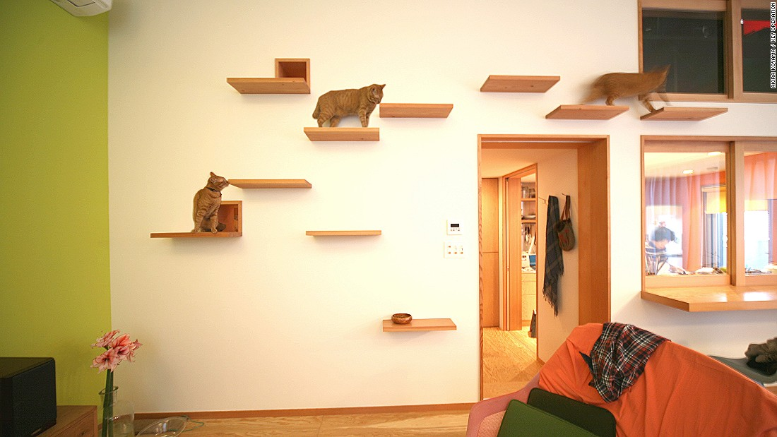 House Taishido is a three-story house in Tokyo, designed by Key Operation architects. The designers built a jungle-gym like shelving system on one wall where the owners' pet cat could jump and play.