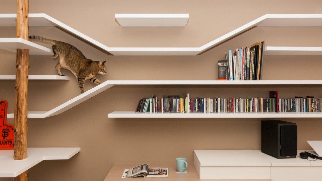 "This ""catwalk"" doubles as a shelf for the owners' books, movies and music collection."