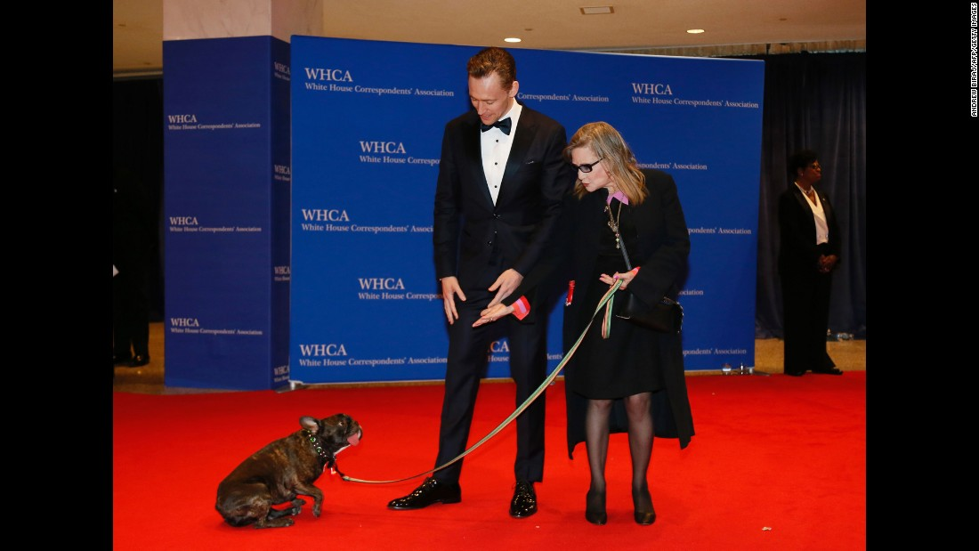 Tom Hiddleston looks on as Fisher and her dog, Gary, arrive for the 102nd White House Correspondents' Association dinner in Washington on April 30, 2016.