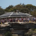 fans watch sydney hobart race