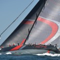 scallywag sydney hobart race