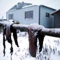 15 Sutter Alaska