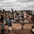 internally displaced peopl