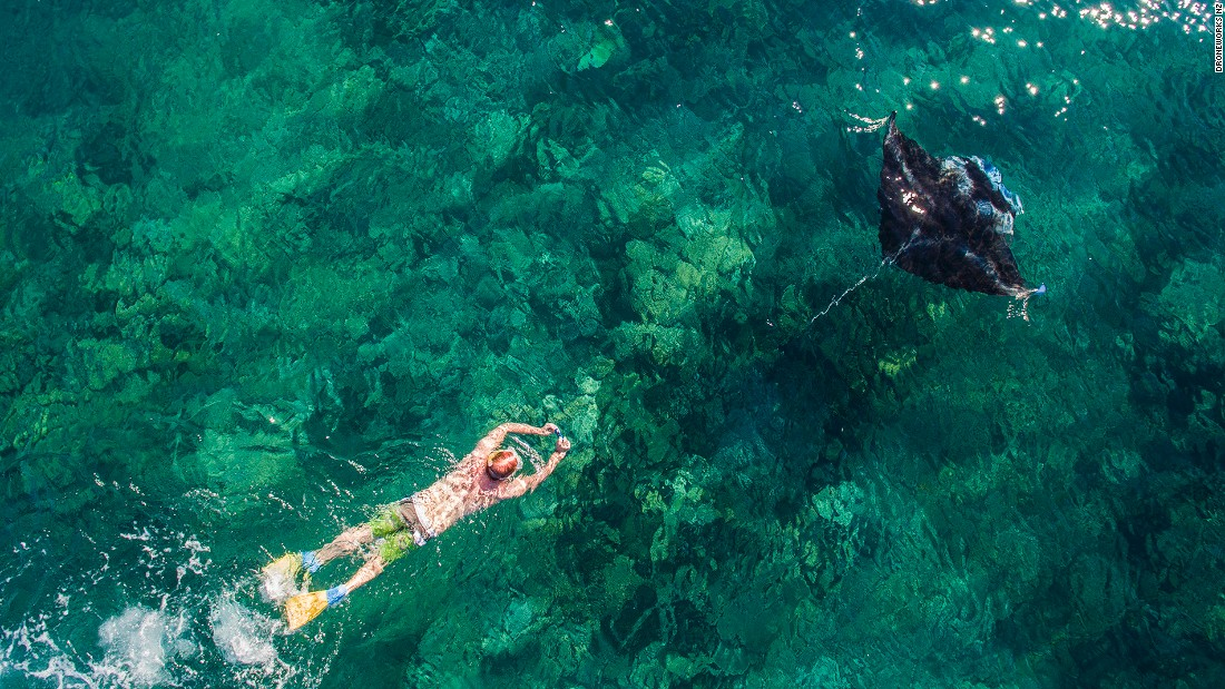 <strong>Yasawa island, Fiji: </strong>Skydiver and drone enthusiast Colin Aitchison, otherwise known as Droneworks NZ, took this picture of a snorkeler following a manta ray in the pristine ocean by the Yasawa Islands, Fiji.