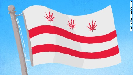 marijuana leaves on dc flag illustration