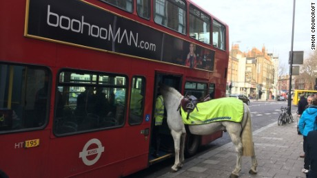 Horsing around in London: This image has been widely shared since it was posted Tuesday.