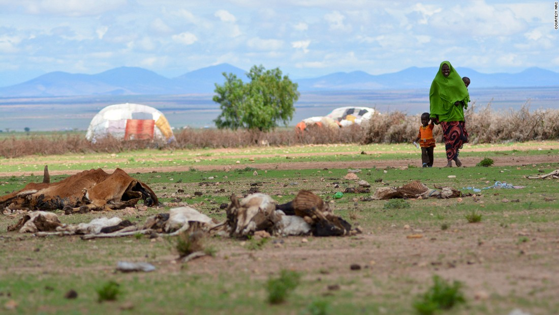 It's not just conflict forcing people to move. Sudden-onset natural disasters such as floods and storms caused more than 1 million displacements in 2015. Slow-onset causes such as drought, however were not included in the report. Pictured: A family walks through the drought-affected area of Barisle village in Ethiopia in April 2016.<br />