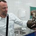 falcon-feeding