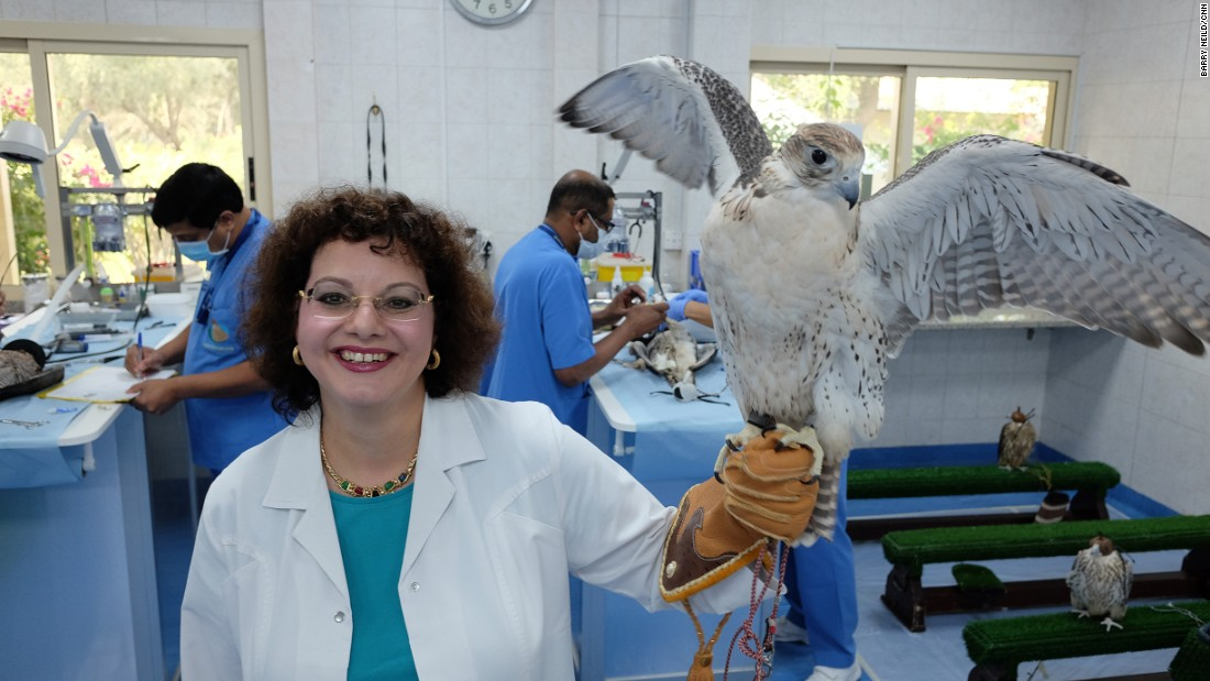 <strong>Falcon queen of Arabia:</strong> The Abu Dhabi Falcon Hospital is one of the most popular tourist attractions in the UAE's capital. It's a world-leading center of falconry medicine headed by German veterinarian Margit Gabriele Müller.