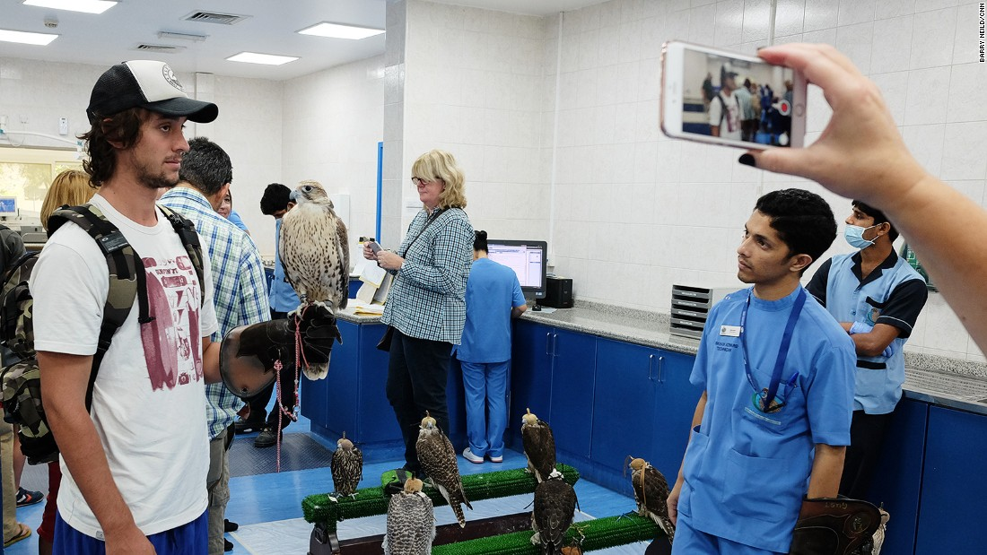 <strong>Hospital tour: </strong>The hospital throws open its doors to twice-daily tours (except Fridays). The award-winning tours offer a fascinating glimpse into the hospital's working life and offer close-up experiences with beautiful birds.