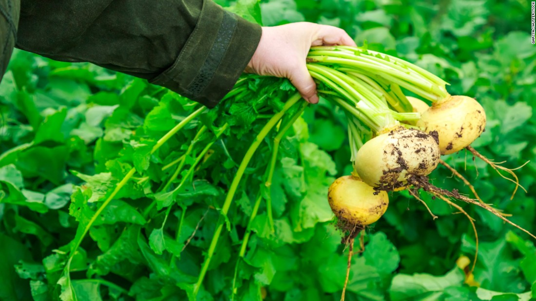 Turnips are a cruciferous vegetable, known for their high concentrations of vitamins, minerals and health-promoting carotenoids. They're also great sources of fiber, folate and vitamins C, E and K.