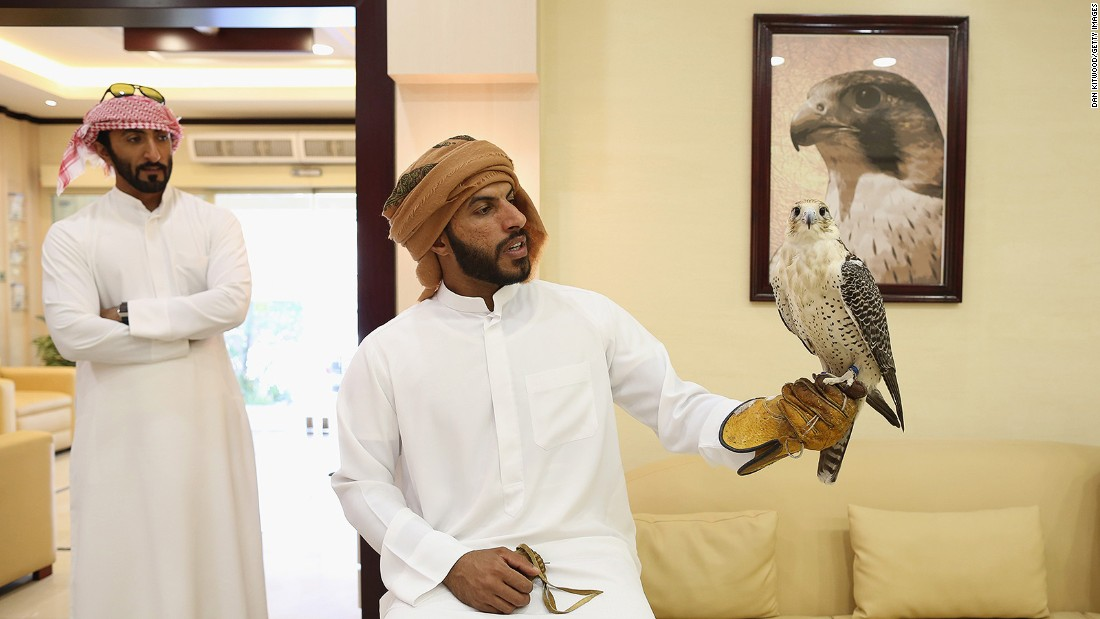 "<strong>Anxious falconers: </strong>The birds' owners sometimes wait hours in reception while surgery is carried out. ""When the falconer comes to visit a sick bird here, the falcon will recognize the owner and try to make some sounds and move a little bit,"" says Müller. ""It's fantastic to see how strong the bond is between the falcon and a falconer."""