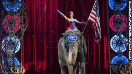 A performer rides an elephant holding a US national flag during a Ringling Bros. and Barnum & Bailey Circus performance in Washington, DC on March 19, 2015. Across America through the decades, children of all ages delighted in the arrival of the circus, with its retinue of clowns, acrobats and, most especially, elephants. But, bowing to criticism from animal rights groups, the Ringling Bros. and Barnum & Bailey Circus announced on March 5, 2015, it will phase out use of their emblematic Indian stars. AFP PHOTO/ ANDREW CABALLERO-REYNOLDS        (Photo credit should read Andrew Caballero-Reynolds/AFP/Getty Images)
