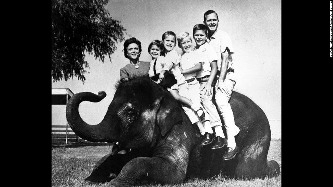 The Bush family poses on an elephant during the 1964 Senate campaign. From left are Bush, her children Dorothy, Marvin, Neil and Jeb, and her husband. Her son, George, was away at school.