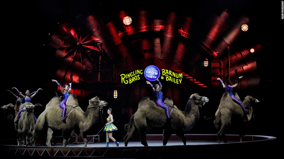 "Performers with the Ringling Bros. and Barnum & Bailey circus ride camels during a show in Orlando on Saturday, January 14. The circus is <a href=""http://www.cnn.com/2017/01/14/entertainment/ringling-circus-closing/index.html"" target=""_blank"">closing after more than 100 years in operation</a>, according to a press release from Feld Entertainment, which has owned Ringling Bros. for the last 50 years."