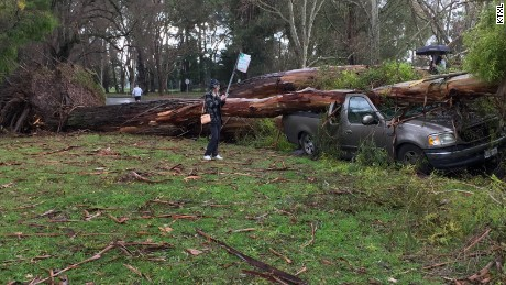 Two different trees fall on one man's two different cars