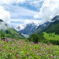 Beautiful India Valley of Flowers Flickr Alosh Bennett 4951216953