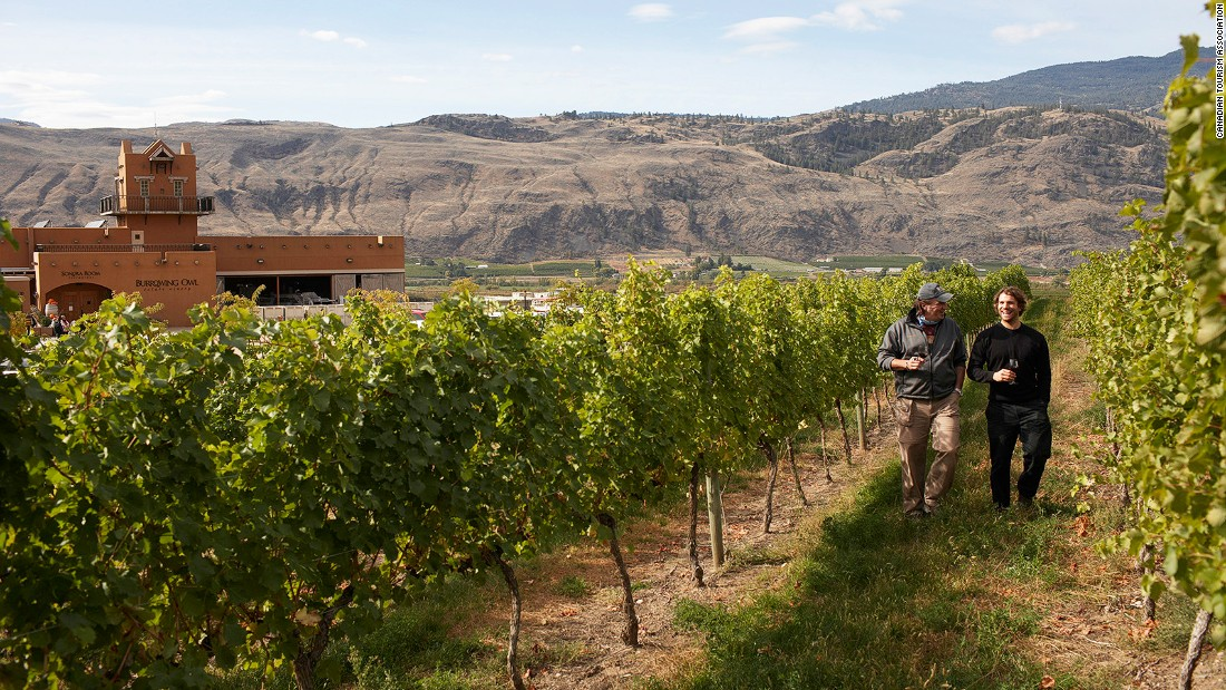 <strong>Okanagan Wine Region, Canada: </strong>Okanagan, a four-hour drive from Vancouver, is a great place to do a wine tasting bike tour. It has a 6.2-mile trail through vineyards and a former Gold Rush town.