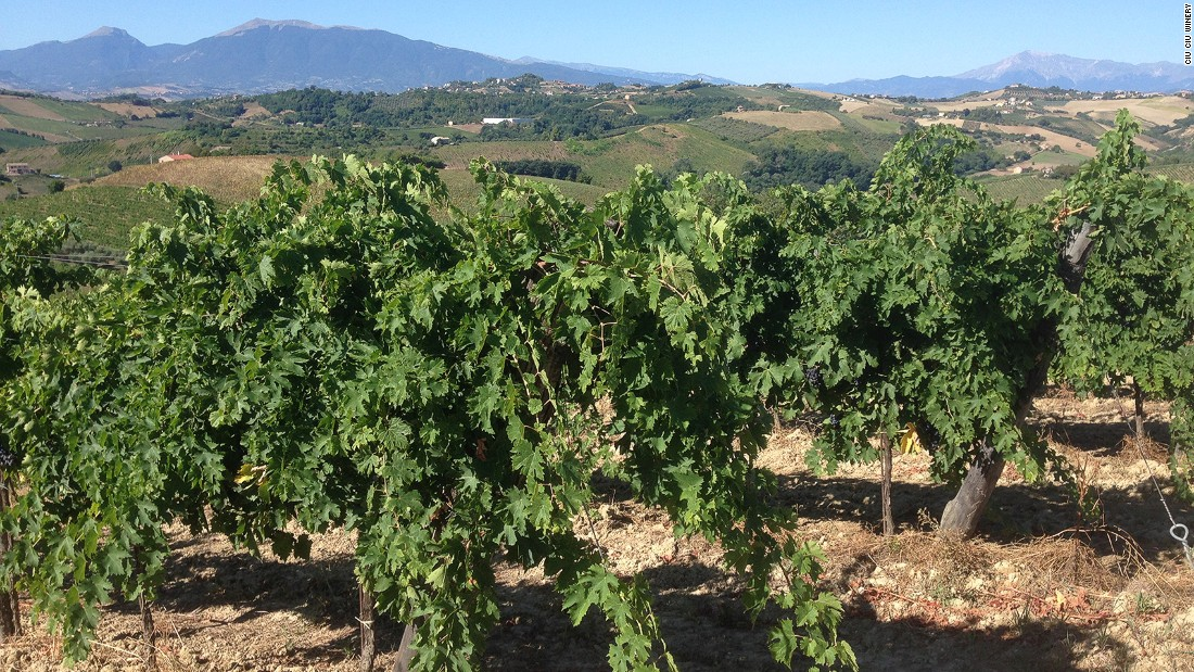 11 Undiscovered Wine Regions Cnn Com