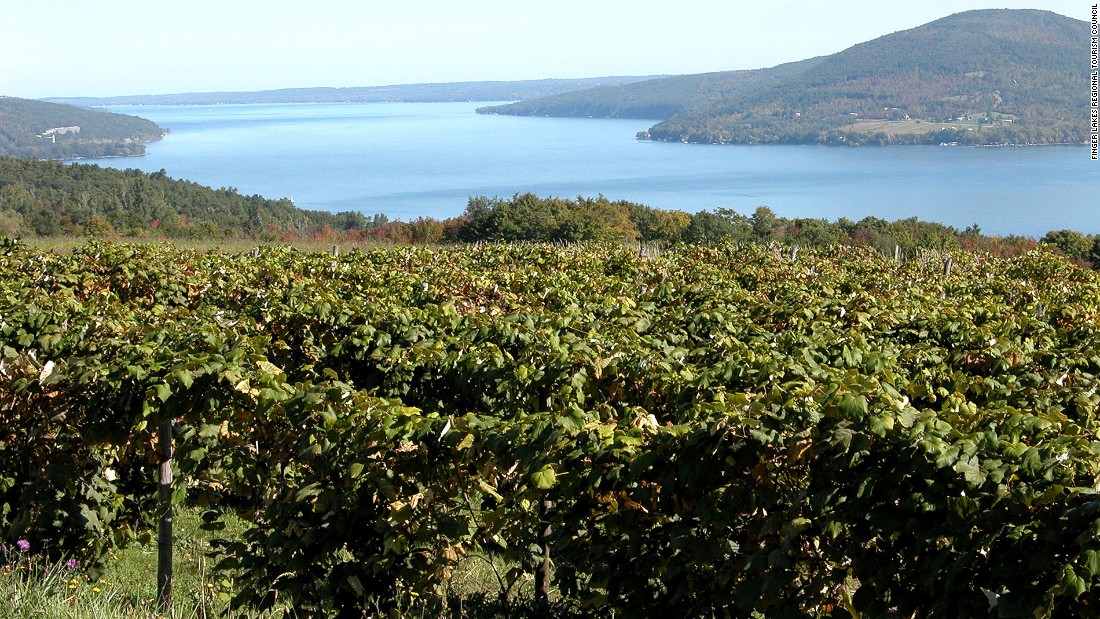 <strong>Finger Lakes Region, New York:</strong> The Finger Lakes Region of New York State has a pretty landscape and four wine trails with more than 100 wineries, known for their popular Rieslings.