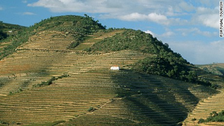 Douro might be the world's most beautiful wine regions.