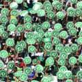Chapecoense Palmeiras gal 3