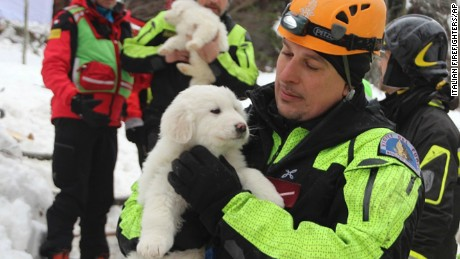 Firefighters hold three puppies that were found alive in the rubble of the avalanche-hit Hotel Rigopiano, near Farindola, central Italy, Monday, Jan. 22, 2017. Emergency crews digging into an avalanche-slammed hotel were cheered Monday by the discovery of three puppies who had survived for days under tons of snow, giving them new hope for the 23 people still missing in the disaster. (Italian Firefighters via AP)